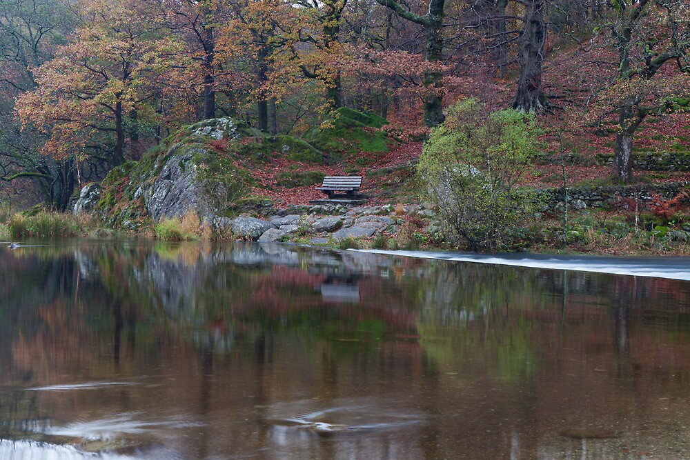 Grasmere Reflections by Nick Atkin