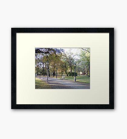 Berlin Park Framed Print