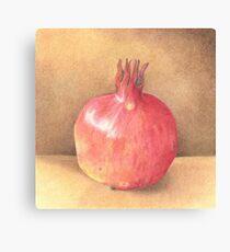 pomegranate - coloured pencil Canvas Print