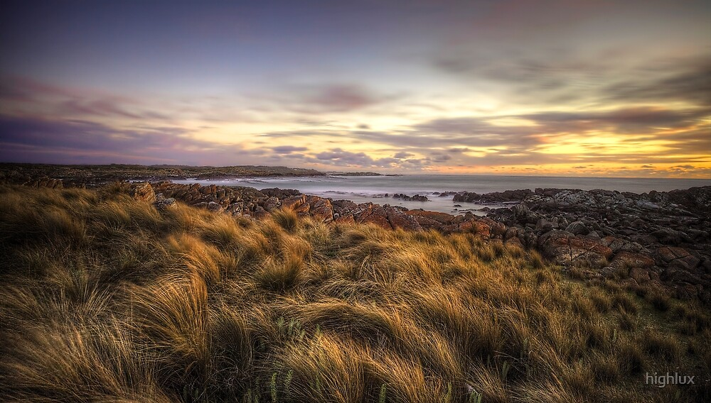 Button Grass and Sea - Tarkine Coast - Tasmania by highlux