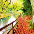 The Silent Pool,  Shere - Orton by Colin  Williams Photography