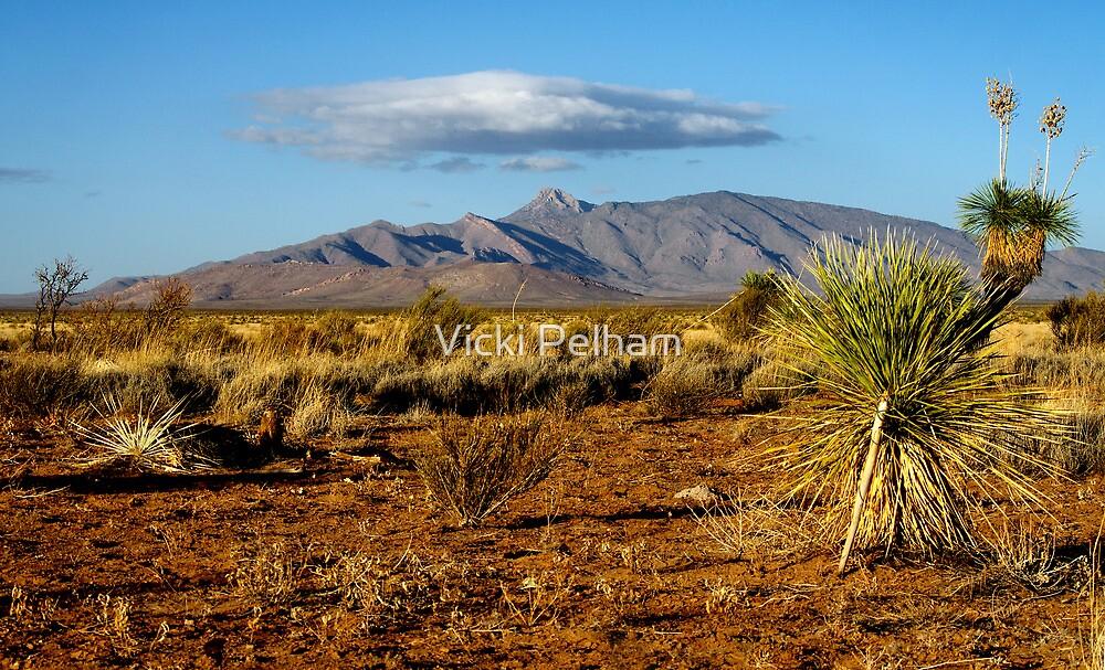 Ascending From the Desert Floor by Vicki Pelham