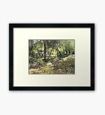 Greek forest Framed Print