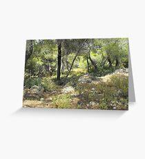 Greek forest Greeting Card
