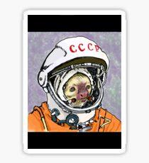 Cosmonaut Sloth Sticker
