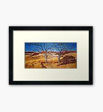 New Mexico Shanty Framed Print