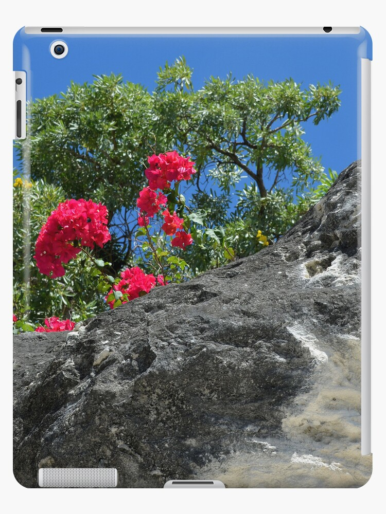 Touch of Red | iPad Case by Jeremy Lavender Photography