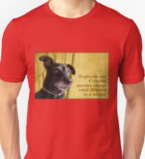 Dogfucius say: Crowded elevator always smell different to a midget. Unisex T-Shirt