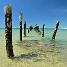 The Old Pier by Glenda Williams