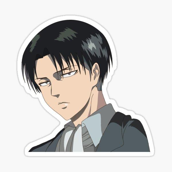 Levi Sticker
