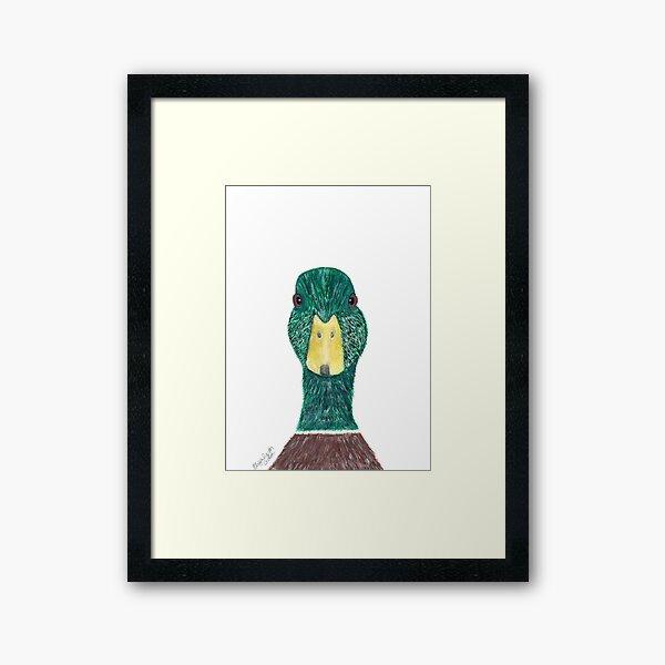Wild Green and Brown Male Mallard Duck with Yellow Beak Print...Quack! Framed Art Print