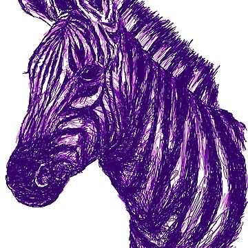 Zebra Sketch Purple by sandyeates