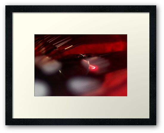 Drenched in Wine by Kenneth Haley
