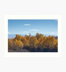 Big Timber creek autumn color Art Print