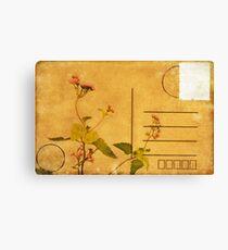 floral pattern on postcard Canvas Print
