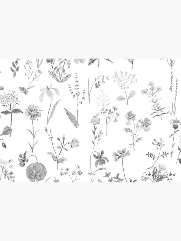 countryside wildflowers black and white by ColorandColor