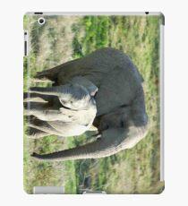 ele pad iPad Case/Skin