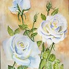 White rose by Victoria  _Ts