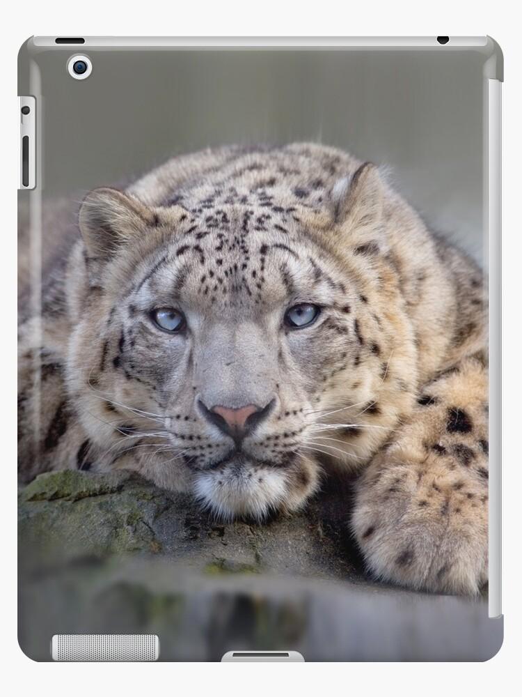 Vishnu Snow Leopard iPad Case by Krys Bailey