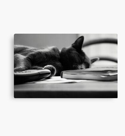 Take a break Canvas Print