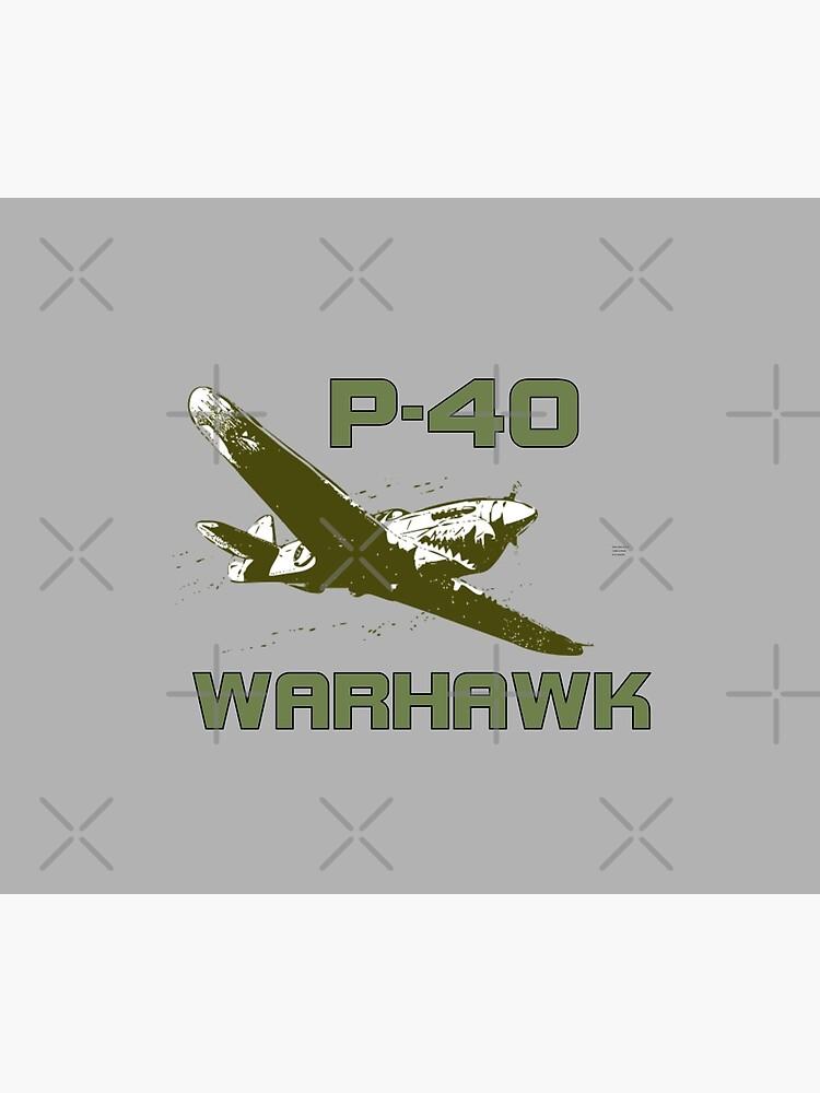 P-40 Warhawk by tshdesigns