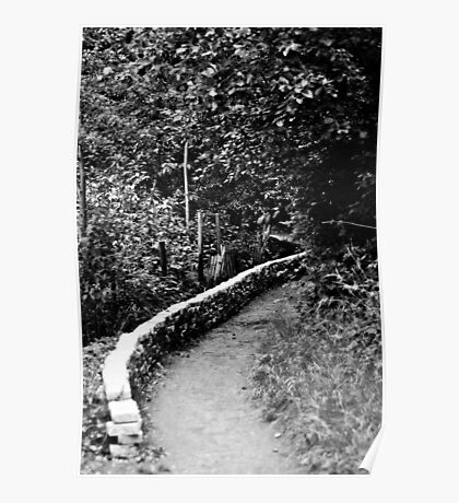 Path Through the Woods - London Poster