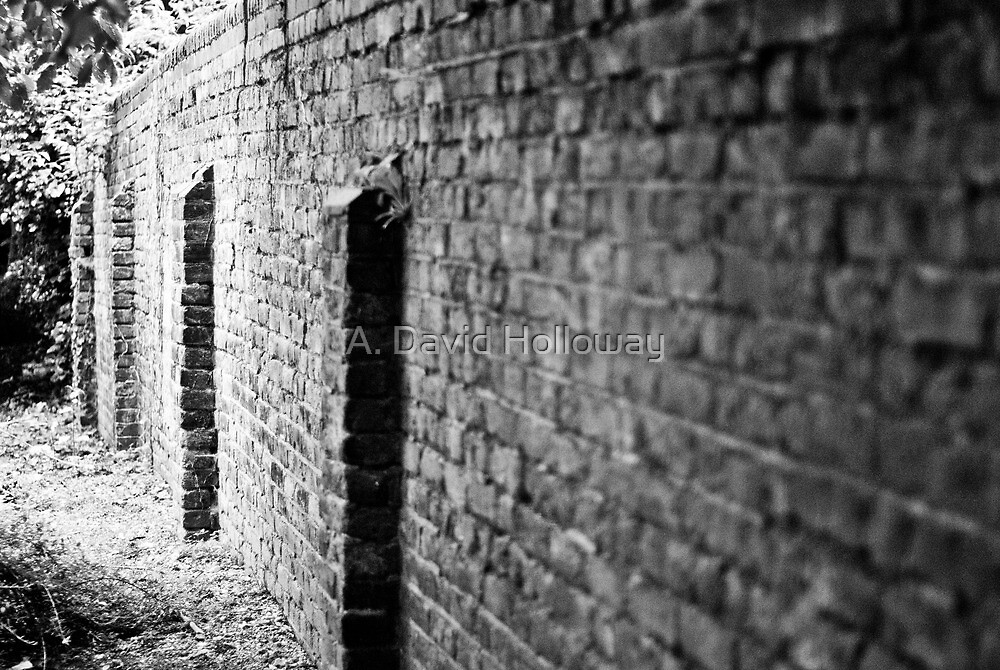 A Wall Along a Path in Southwark #2 by Aaron Holloway