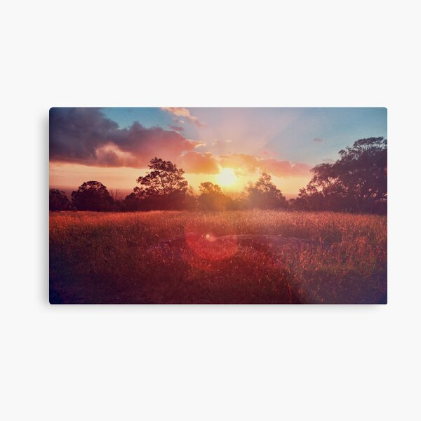 Beautiful Sunset Landscape Metal Print