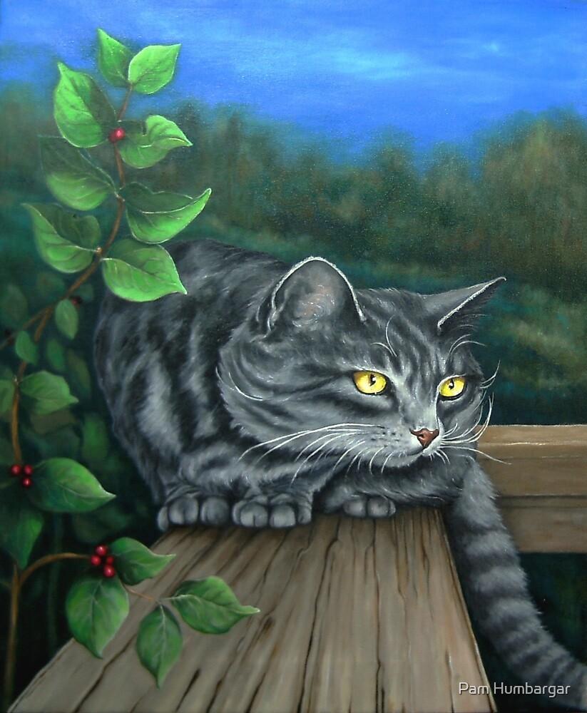 A Silent Watcher by Pam Humbargar
