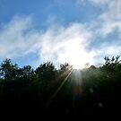 Catskill Mountains Sun by skyhat