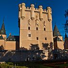 Spain. Segovia. Alcazar. by vadim19