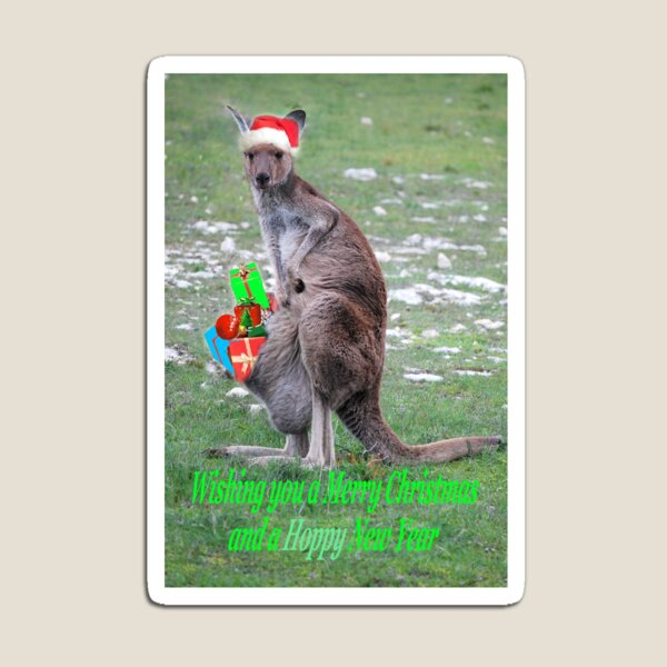Merry Christmas and a 'Hoppy' New Year Magnet