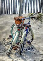 Beach Transportation by Kathy Baccari