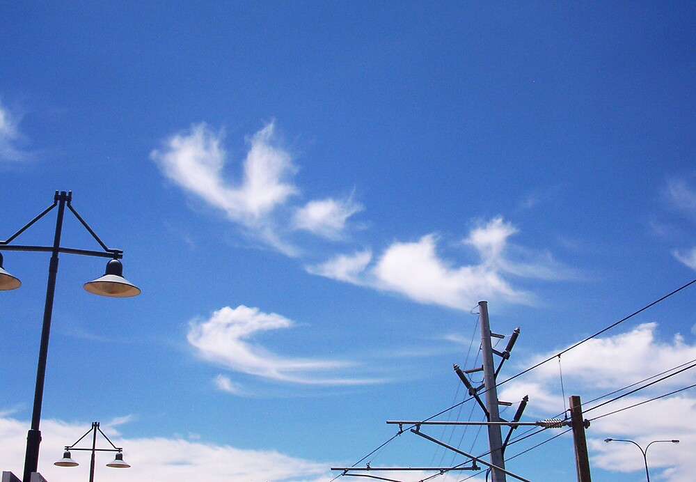 Claremont Station Wires - 13 11 12 by Robert Phillips