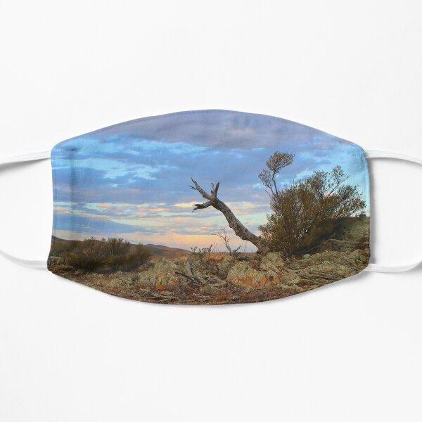 Nature's sculpture, Bendleby Ranges, Australia Flat Mask