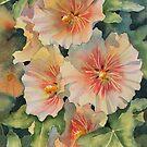 Peachy Hollyhocks by Ann Mortimer