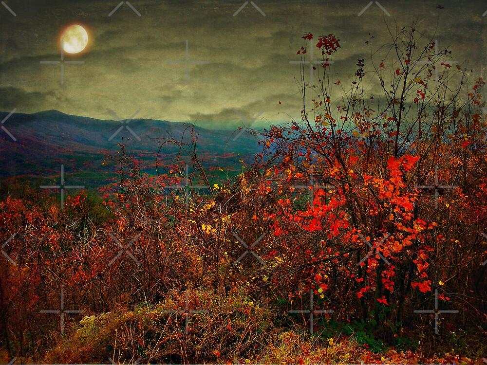 Moonlit hillside by Scott Mitchell