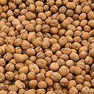 Walnuts by Kuzeytac