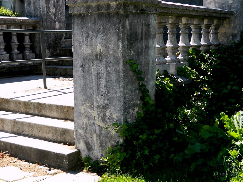 Stone Steps by ctheworld