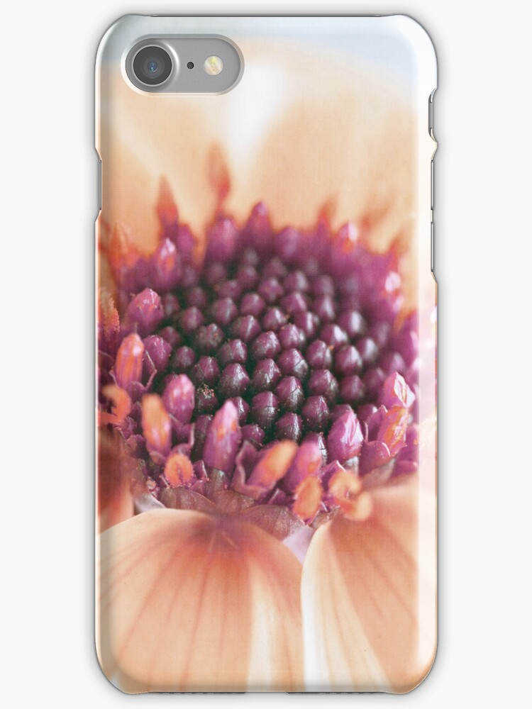 Just Peachy iPhone / iPod Case by Astrid Ewing Photography