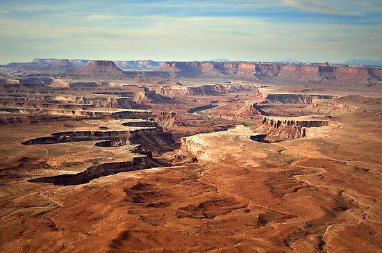 Canyonlands by Tara  Turner