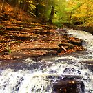 """Fall on the Falls by Christine """"Xine"""" Segalas"""