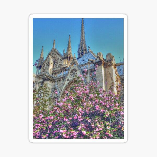 Charming Notre Dame Sticker