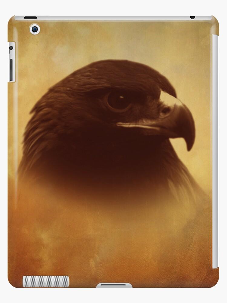 Juvenile Eagle iPad Cover by Pamela Phelps