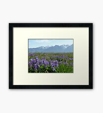 Olympic Mountains Framed Print