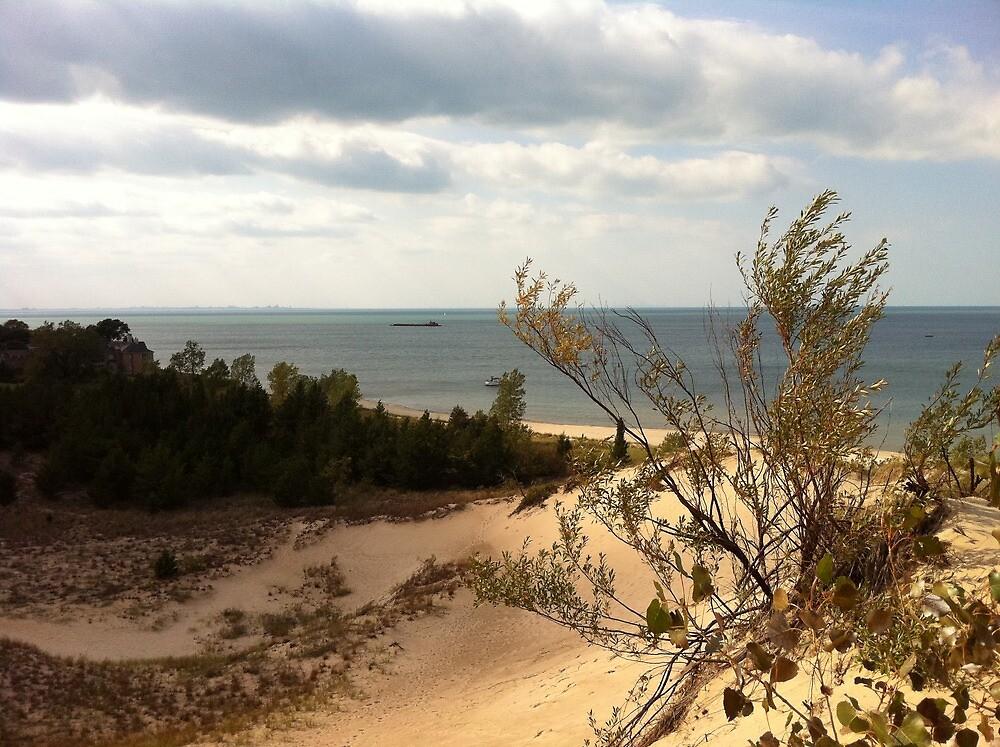 lake view atop a dune by Eve Landsman