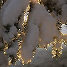 Snow at Sunrise by Christopher Clark