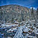 Footbridge Over Frozen Water by Adam Northam