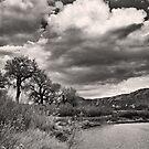 Island Park Cloudscape by Kim Barton