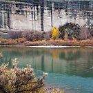 Placer Point Autumn by Kim Barton